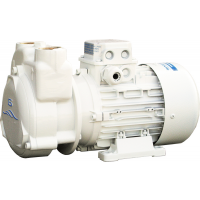 Elettro Pompa Gianneschi CP 30 24V