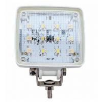 Proiettore Stagno a 12 LED