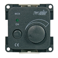 Variatore Elettronico 12 V